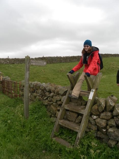 Crossing a field wall.