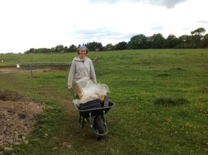 Action shot of Beth with the wheelbarrow
