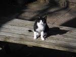 I will miss you too, Jenny-Kitty