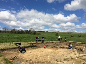 A view of the trench, with some nice sunny weather last week (hopefully it'll hold up!)