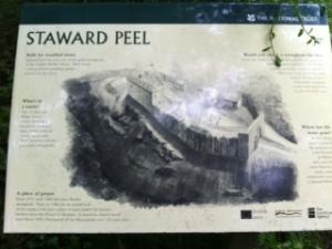 Staward Peel
