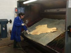Our colleague Marie spraying her hide with an emulsion of oil and water